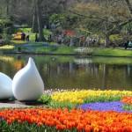 7 triệu bông tulip trong vườn hoa lớn nhất thế giới