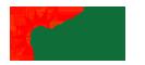 Công ty hạt giống hoa trồng chậu chất lượng cao