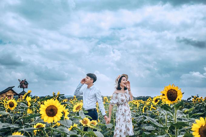 canh dong 3 hecta hoa huong duong no ro o bac giang 2 - Cánh đồng 3 hecta hoa hướng dương nở rộ ở Bắc Giang