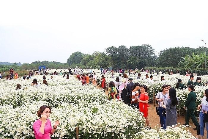 """luu ban nhap tu dong 3 - Những địa điểm chụp cúc họa mi """"đẹp không tưởng"""" tại Hà Nội"""