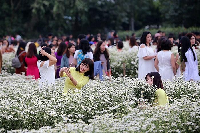 """luu ban nhap tu dong 4 - Những địa điểm chụp cúc họa mi """"đẹp không tưởng"""" tại Hà Nội"""