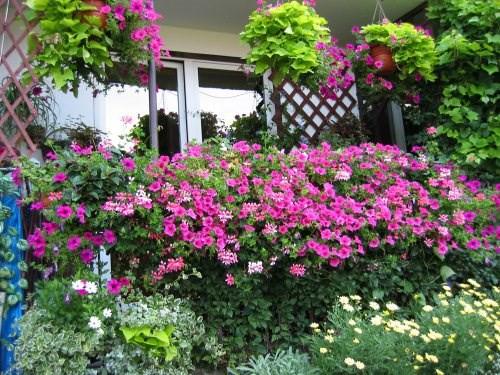 me man nhung ban cong day hoa tuyet dep 2 - Mê mẩn những ban công đầy hoa tuyệt đẹp