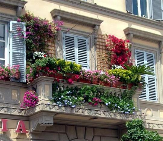 me man nhung ban cong day hoa tuyet dep 4 - Mê mẩn những ban công đầy hoa tuyệt đẹp